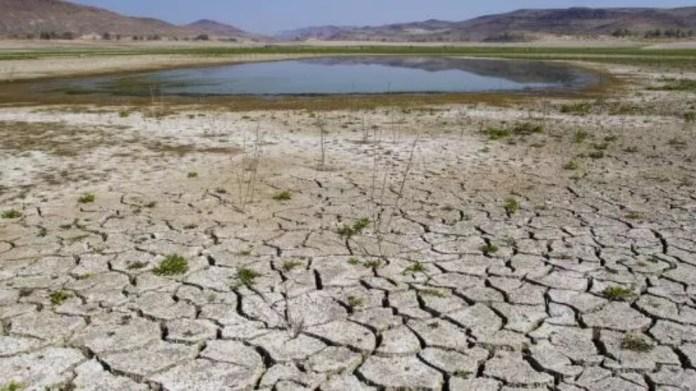 2050'de 5 milyarı aşkın kişi su sıkıntısı yaşayabilir