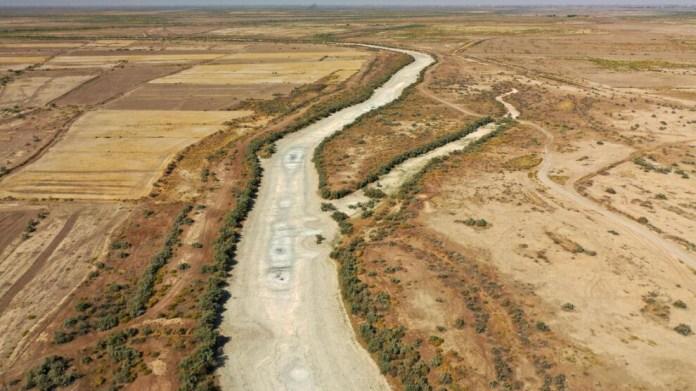 Irak'ta ekili alanlar kuraklık nedeniyle yarıya indirildi