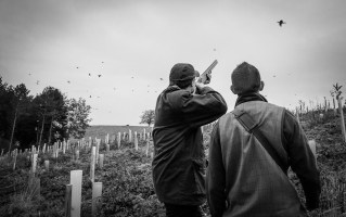Game Shoot_Althorp_022