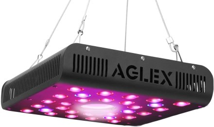 Best COB LED Grow Lights in [year] - [Buyer's Guide] 2