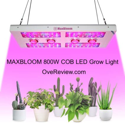 Best COB LED Grow Lights in [year] - [Buyer's Guide] 11