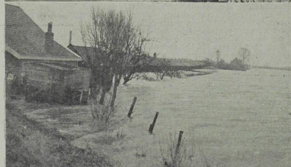 Deze foto geeft een idee hoe hoog het water nabij Maassluis stond.
