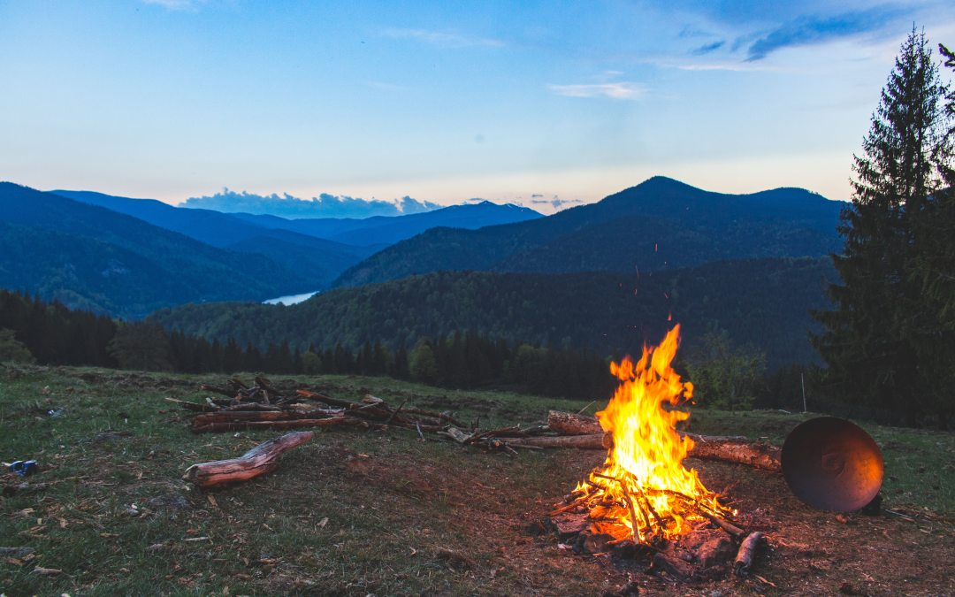 Freedom of Travel & The Wilderness