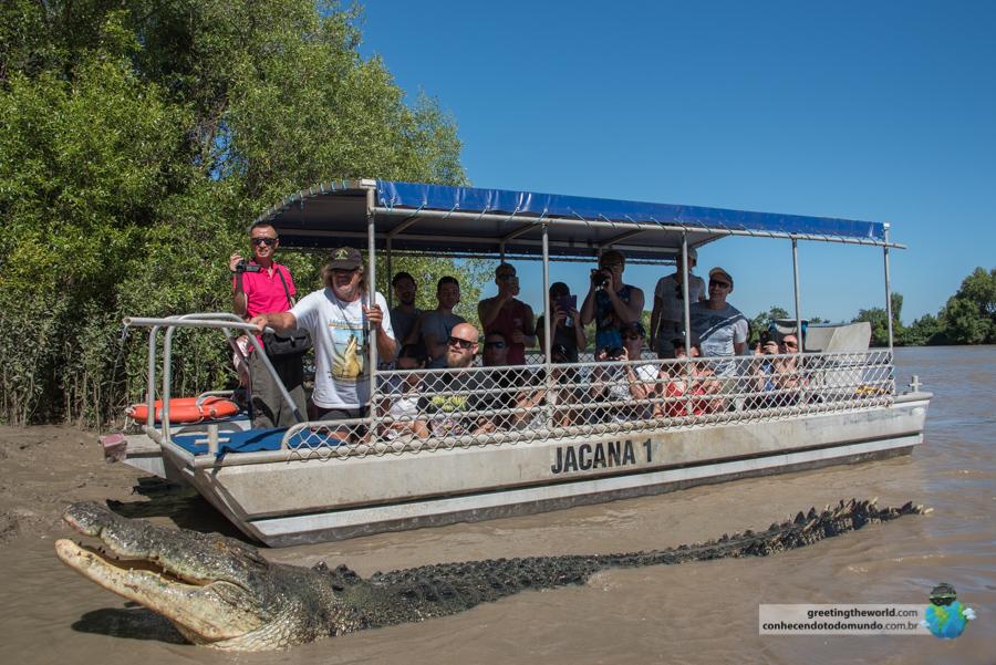 Crocodile River Cruise