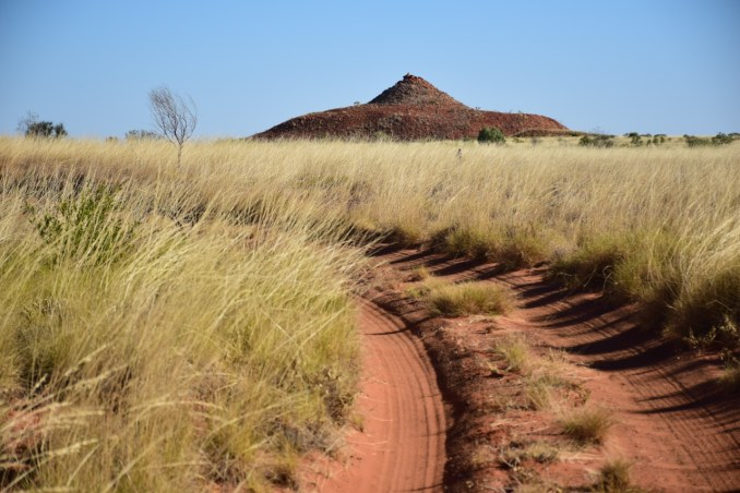 spinifex and mexican hat