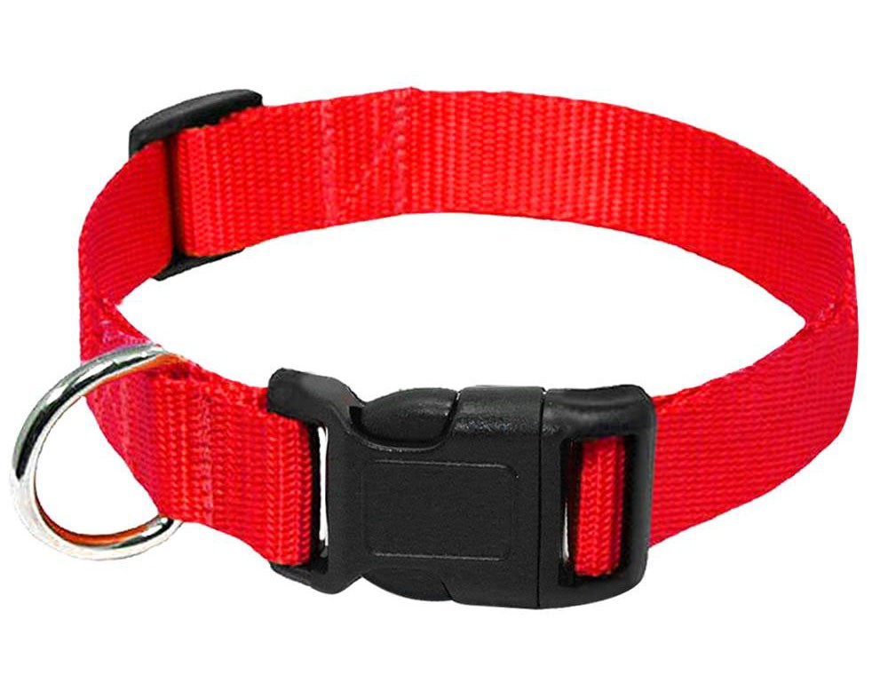 red nylon buckle dog and cat collar