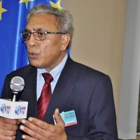 KC-EU  to organize a three-day protest against revoking of special status of Kashmir by India: Ali Raza Syed
