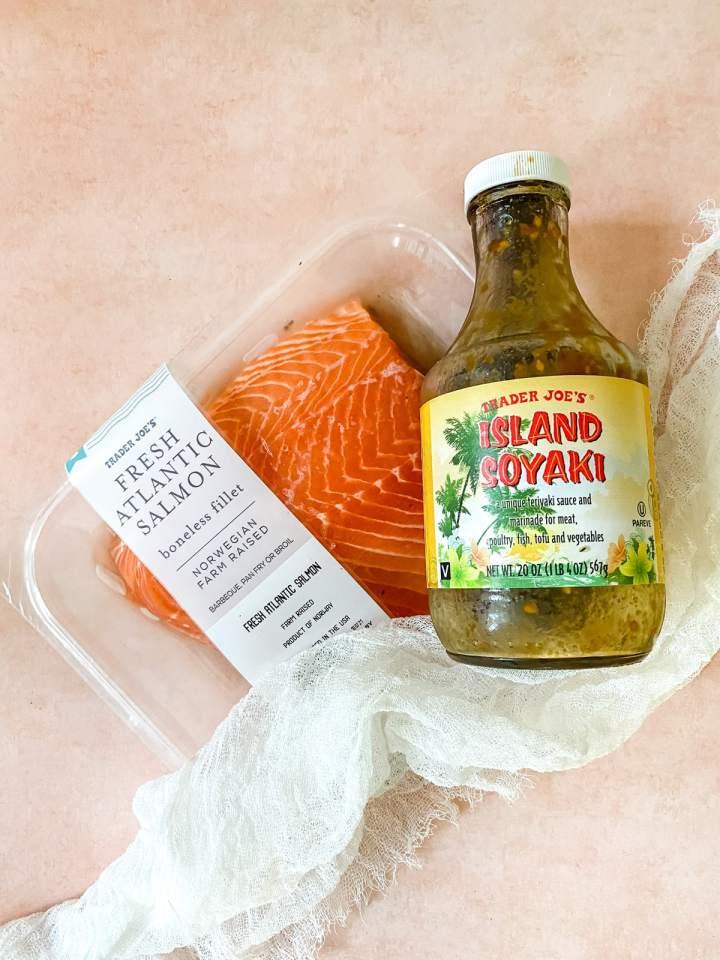 salmon and teriyaki sauce on a pink background