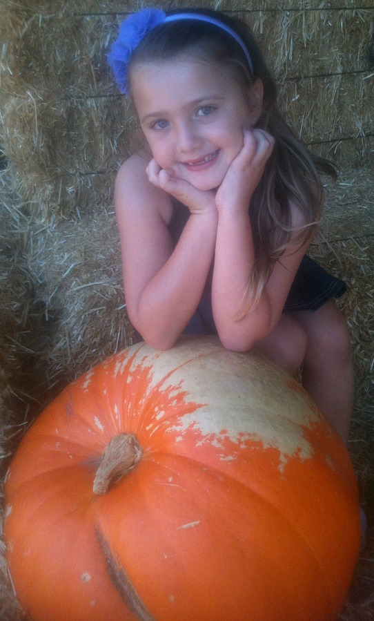 irvine-park-railroad-pumpkin-patch-my-little-pumpkin
