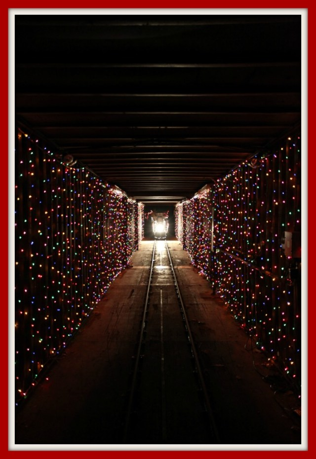 Train in the Tunnel of Lights