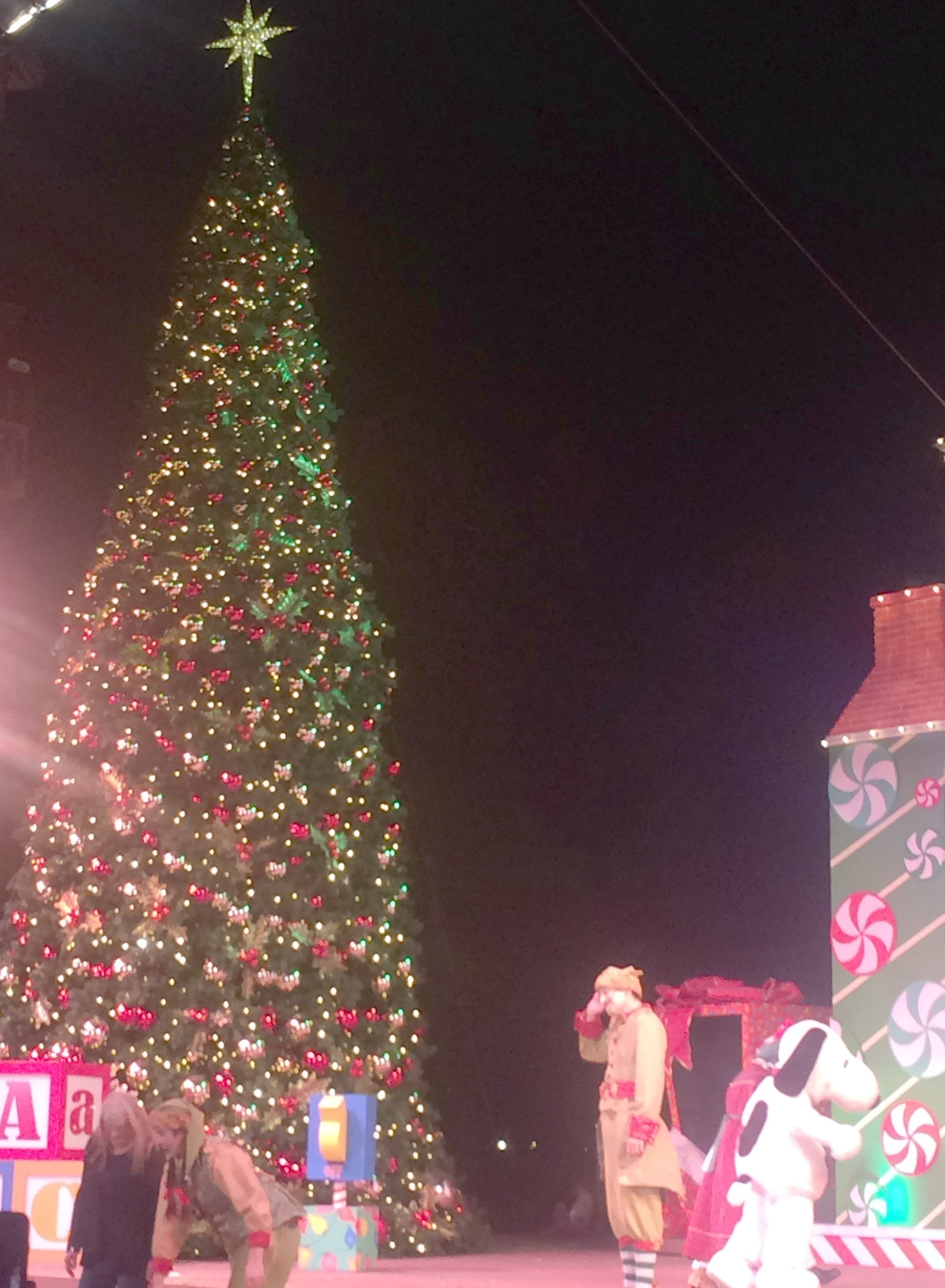 Knotts Merry Farm Christmas Tree
