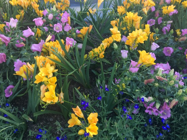 disney-parks-eggstravaganza-flowers