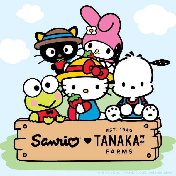 sanrio-tanaka-farms-holiday-village-2