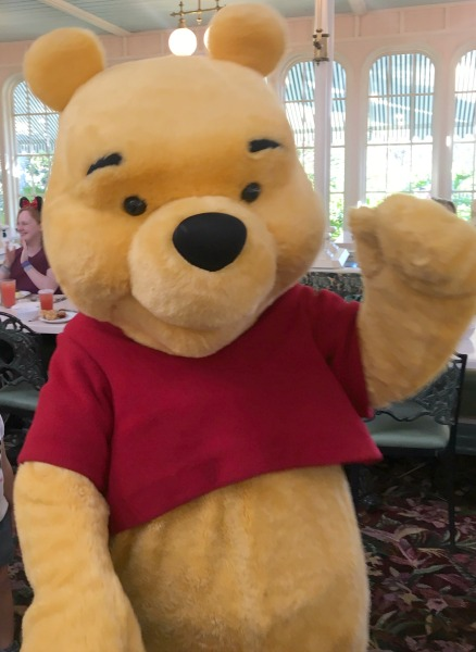 the-crystal-palace-winnie-the-pooh-waving