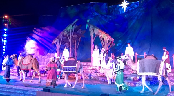 seaworld-o-wondrous-night-nativity-scene