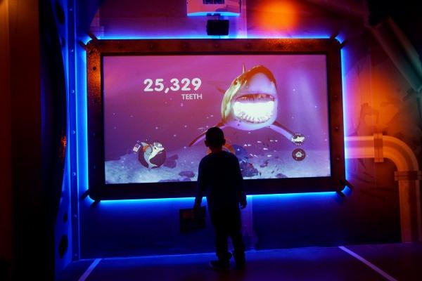 SeaLife Aquarium exhibits.(Photo by Sandy Huffaker/Legoland)