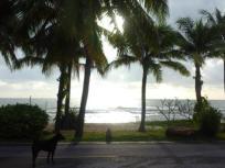 Strand voor de woonwijk