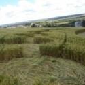 Agroglifos (crop circles) voltam a aparecer em plantações do oeste do estado de Santa Catarina, Brasil 10