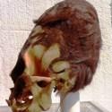 Estes antigos crânios alongados não são humanos 8
