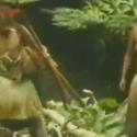 Tribo em Papua Nova Guiné encontra homem branco pela primeira vez 1