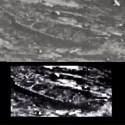 Foto da NASA revela estrutura em forma de barco na superfície de Marte 20