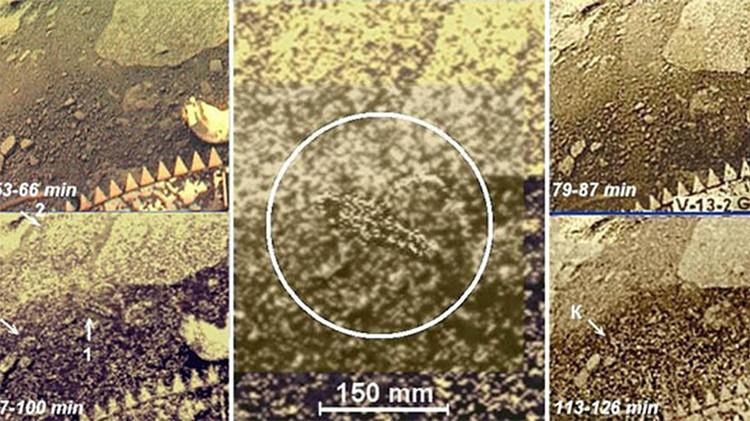 Lembra quando os russos encontraram escorpiões em Vênus?