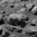 Um mamífero em Marte? 8