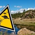 Aquela vez que os alienígenas do subterrâneo mataram 60 pessoas no Novo México, EUA 2