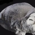 DNA de misteriosa múmia está sendo examinado na Rússia. 17