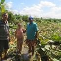 Clarão é reportado no céu e mata fica achata no solo, no Ceará 37