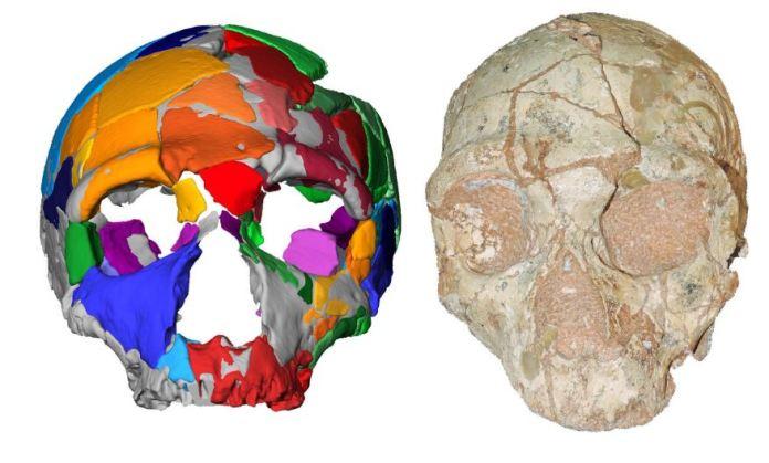 Crânios encontrados na Grécia podem reescrever a história humana