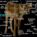 Bezerro mutilado é encontrado vivo na Argentina 9