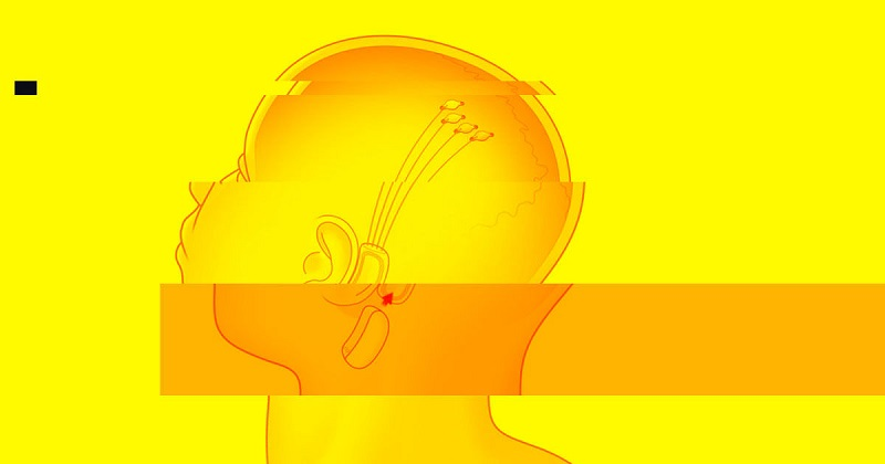 Unir nosso cérebro com a Inteligência Artificial será suicídio, diz cientista