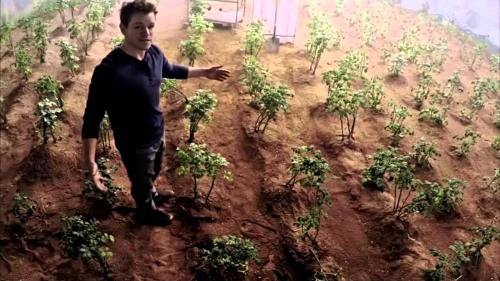 Nova pequisa mostra que é viável plantar lavouras em Marte e na Lua
