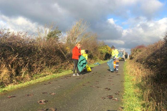 Polícia diz saber o que matou 300 aves no Reino Unido, mas não conta...