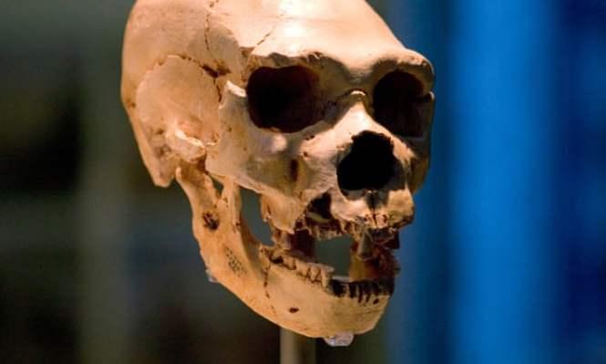 Os primeiros humanos cruzaram com 'população fantasma'