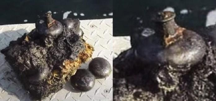 Teriam maçanetas de 300 milhões de anos sido encontradas em carvão?