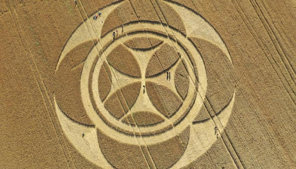 """Agroglifo """"Templário"""" aparece em plantação no norte da França"""