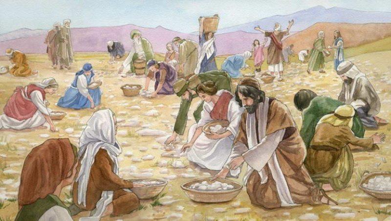 """O que era """"Maná"""", o alimento misterioso enviado do céu por Deus?"""