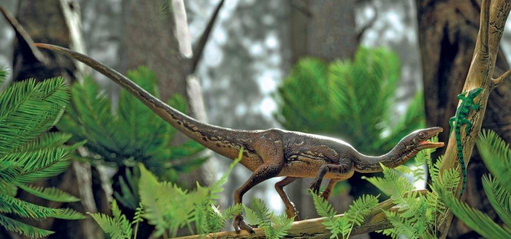 O cérebro avançado de um dinossauro primitivo