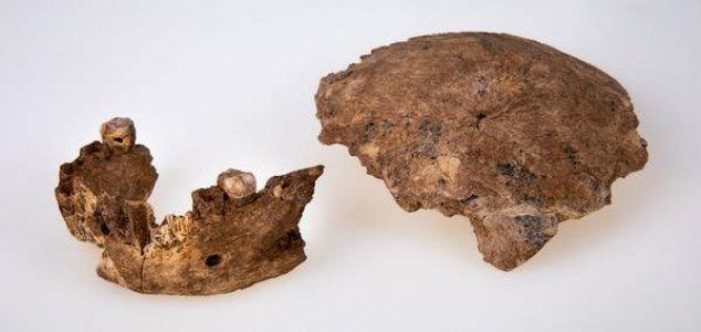 Novo tipo de humano antigo é descoberto em Israel