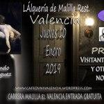 Visitantes de Dormitorio Café Ovni Valencia