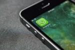 WhatsApp permitirá previsualizar un video antes de descargarlo
