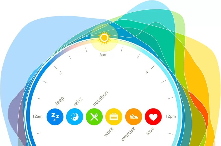 O-Infog-BodyClock About