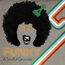 Synctracks Funky & Soulful Grooves