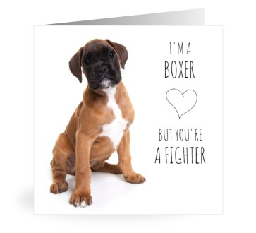 Owiwi boxer fighter kaart