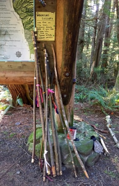 At the Cape Flattery Trail Head, walking sticks provided by the Makah. Free for use-and-return, $5 to take-and-keep.