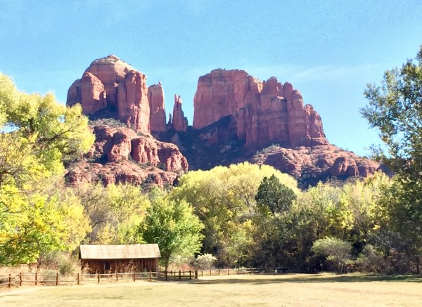 We didn't do any shopping in Sedona. Just went on a nature walk and looked at the rocks.