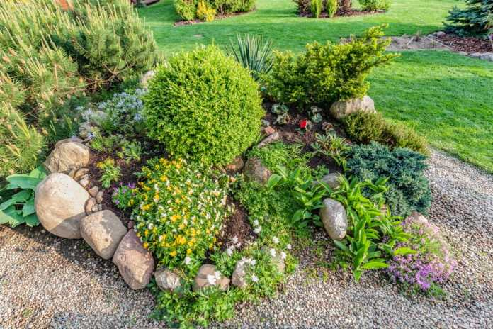 21 Amazing Rock Garden Ideas to Inspire! {Updated 2019 with Pictures} 36