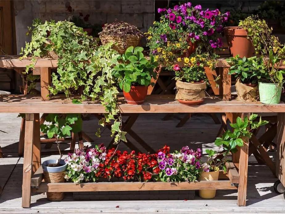 best outdoor shelving popular trends